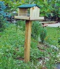 A feeder specially designed for mealworms stands ready for Mountain Bluebirds to arrive.