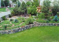 A backyard landscaped for your family and wildlife.