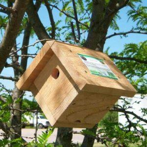 Nest Boxes