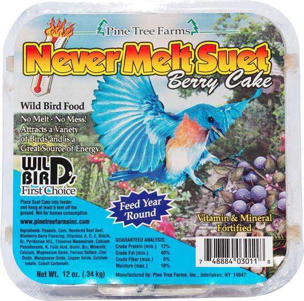 NeverMelt Berry Suet Cake