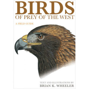 Birds of Prey of the West - A Field Guide