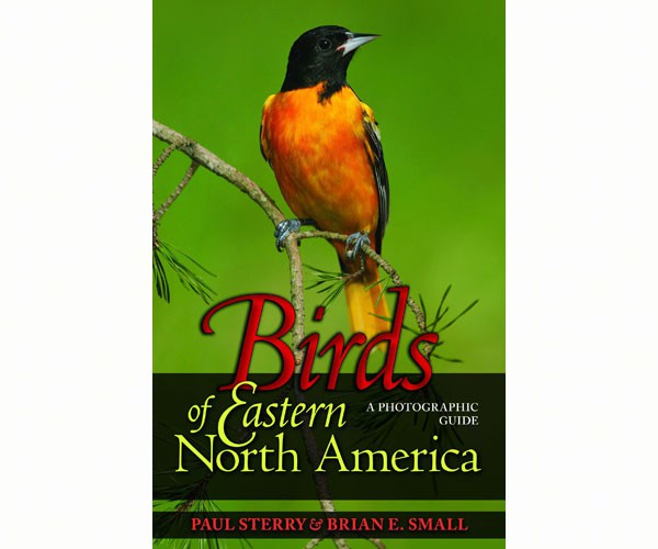 Birds of Eastern North America – A Photographic Guide
