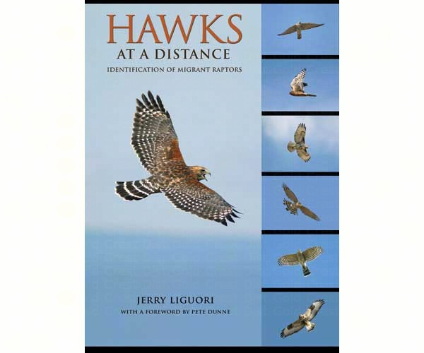 Hawks at a Distance – Identification of Migrant Raptors