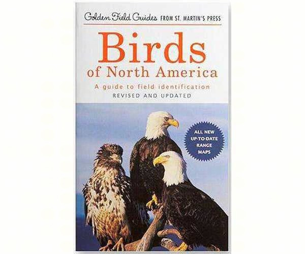Golden Field Guides – Birds of North America