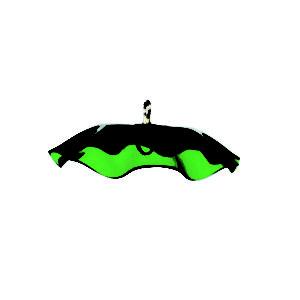 Green Weather Guard