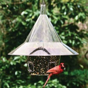 Mandarin Feeder with 4 Arched Ports