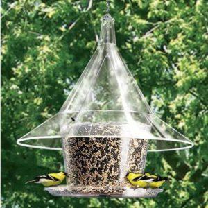 Mandarin Sky Cafe Feeder with seed tray