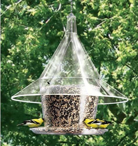 Mandarin Sky Cafe Feeder with seed tray