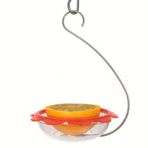 Bo's Marmalade Hanging Oriole Feeder