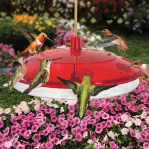New Large 8-port Hummingbird Feeder