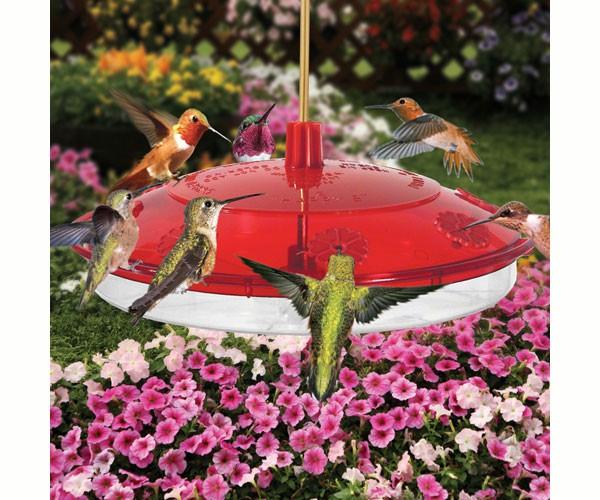 New Large 8-port Hummingbird Feeder