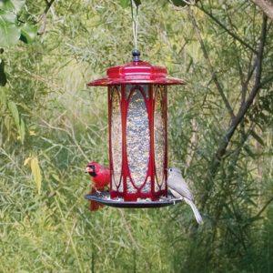 Long Stem Scarlet Rose Hopper Feeder