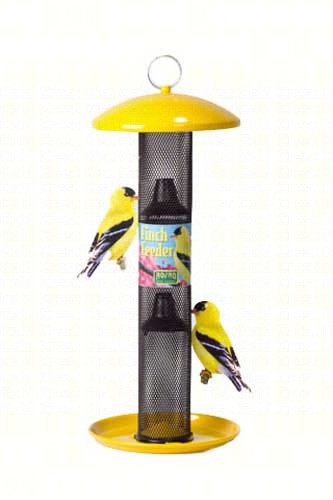 NO/NO Yellow Straight-sided Finch Feeder