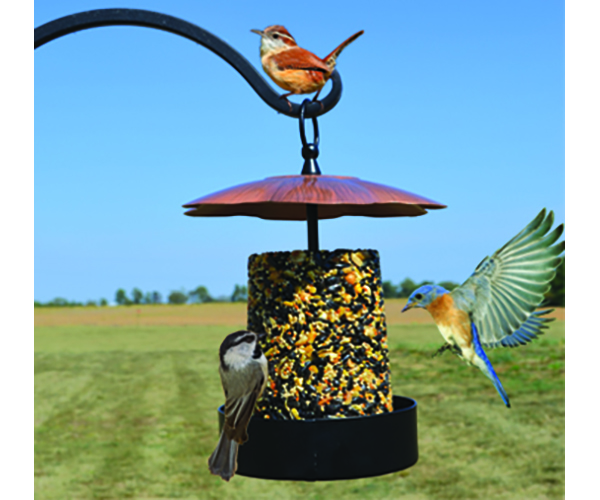 Copper Roof Multi-Purpose Seed Log or Mealworm Feeder