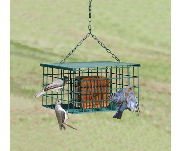 Squirrel Resistant Double Suet Palace