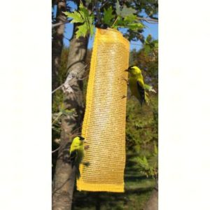 Finch Magic Gold Thistle Sack- Songbird Essentials