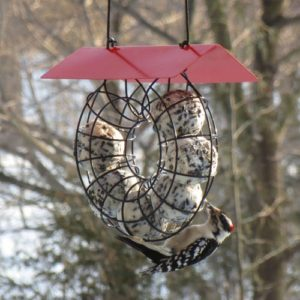 Circular Suet Ball Feeder with Red Roof