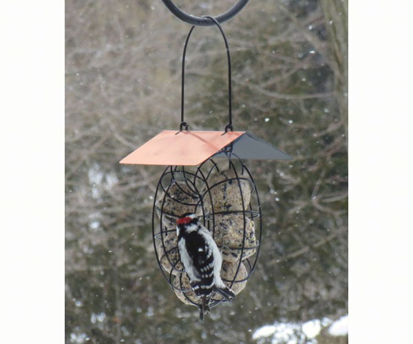 Circular Suet Ball Feeder with Copper Roof
