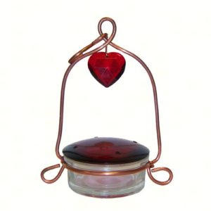 Tweet Heart Lantern glass Hummingbird Feeder