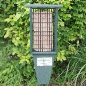 Recycled Double Suet Feeder with Tail Prop - Hunter Green