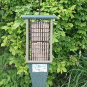 Recycled Double Suet Feeder with Tail Prop - Hunter/Driftwood