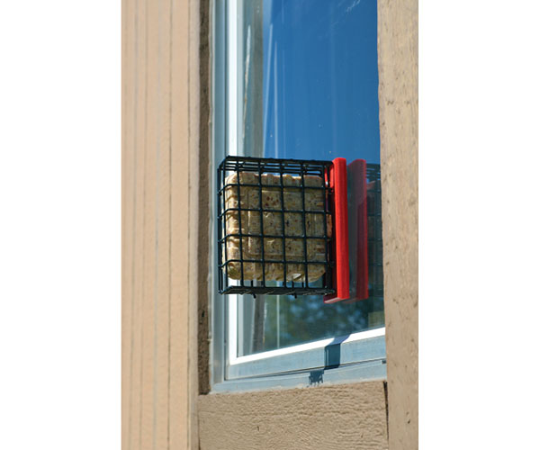 Recycled Window Suet Feeder - Red