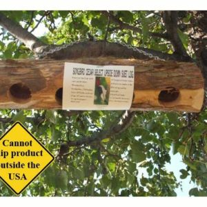 Upside Down Suet Log Feeder - 4 holes