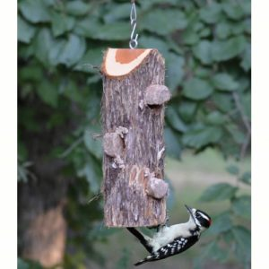 Suet Log Feeder - 3 hole without perches