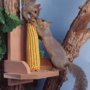 Squirrel Platform Corncob Feeder