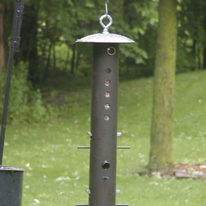 Bear-Proof Bird Feeder