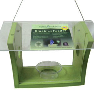 Recycled Bluebird Feeder