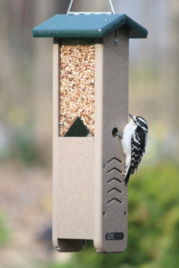 Recycled Woodpecker Feeder